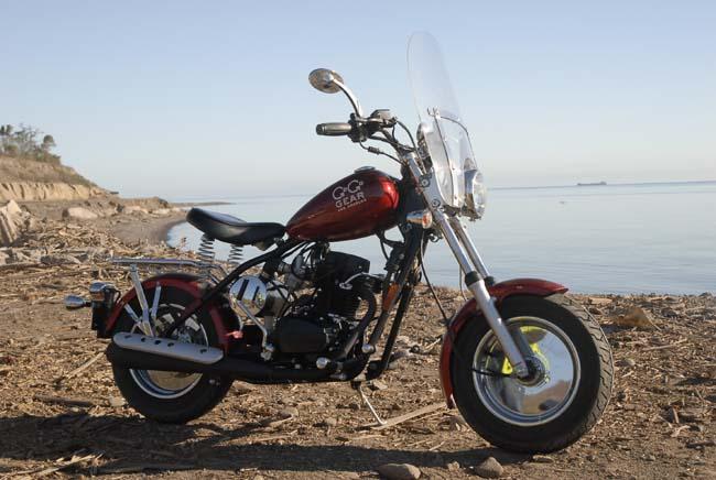 Arlene's Go Go Gear bike...with a John Esposito custom paint job