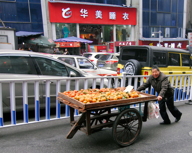 Oranges being delivered the hard way...