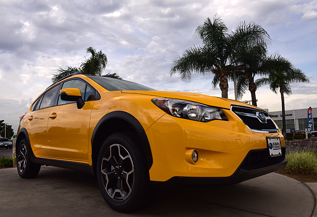 140701_4707-YellowSubie